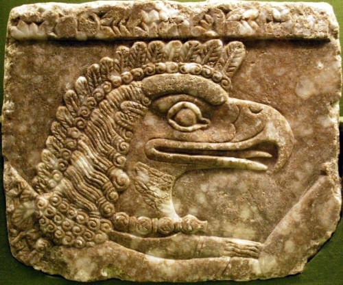 Detail, Apkallu head, from a frieze in Nimrud.  http://non-aliencreatures.wikia.com/wiki/Apkallu