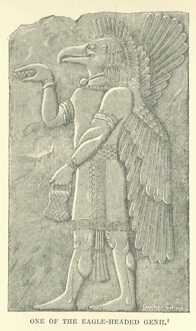 A bird-apkallu with mullilu and banduddu.  Drawn by Faucher-Gudin from an Assyrian bas-relief from Khorsabad. http://www.gutenberg.org/files/17323/17323-h/17323-h.htm#linkBimage-0011