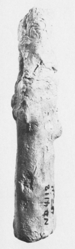 Fish-Apkallū figure, Plate Xb. ND 4118, courtesy of the British School of Archeology in Iraq, photograph by David A. Loggie.