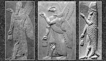 The three types of apkallū are portrayed, with the human ummânū at far left, the Nisroc bird-apkallū type in the middle, and the antediluvian purādu-fish type at far right.  The human ummânū is attested in the Uruk List of Kings and Sages, while other references to bird-apkallū are legion, as documented in Wiggermann and other authorities.  The purādu-fish apkallū is principally attested in Berossus, though other authorities confirm them, as well.  The anthropomorphic qualities of the purādu-fish and the Nisroc apkallu remain unexplained, though the eagle is sacred to Enki / Ea.