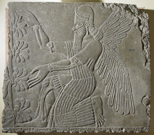 This well-preserved bas relief retains incredible detail. The daggers carried in the Umu-Apkallu's waistband are clear, as is the rosette styling on his wristbands. The earrings are more distinct than most other examples, and the headdress appears to be of the horned-tiara type. The umu-apkallu appears to wear bracelets on his upper arms. Tassels are apparent on the fringes of his robe, as well as behind the neck.