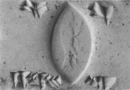 From Ronald Wallenfels, Apkallu-Sealings from Hellenistic Uruk, 1993.  Seal number 23. A fish-apkallu, a paradu-fish apkallu, depicted on a personal seal.  https://www.academia.edu/1368825/Apkallu-Sealings_from_Hellenistic_Uruk