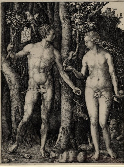 "Albrecht Dürer (1471-1528), Adam and Eve, dated 1504, currently held in the British Museum (1868,0822.167).<br /> At top left on the plate, it states: ""ALBERT DVRER NORICVS FACIEBAT AD 1504.""<br /> Which means: ""Albrecht Dürer of Nuremberg made this 1504.""<br /> https://commons.wikimedia.org/wiki/File:Adam_and_Eve_standing_on_either_side_of_the_tree_of_knowledge_with_the_serpent_by_Albrecht_Dürer.jpg"