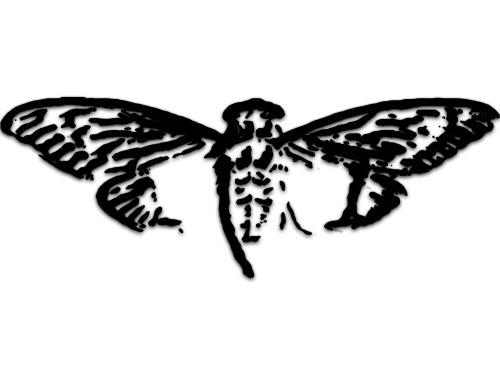 Cicada Lestat Logo Transparent