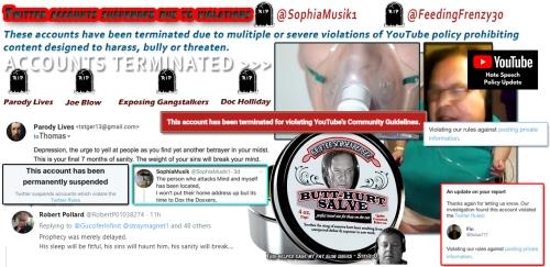 TS YT Channels Struck Hate Speech Twitter Accounts Butt Hurt Meme Bump Ahead Dec 23 2019.png